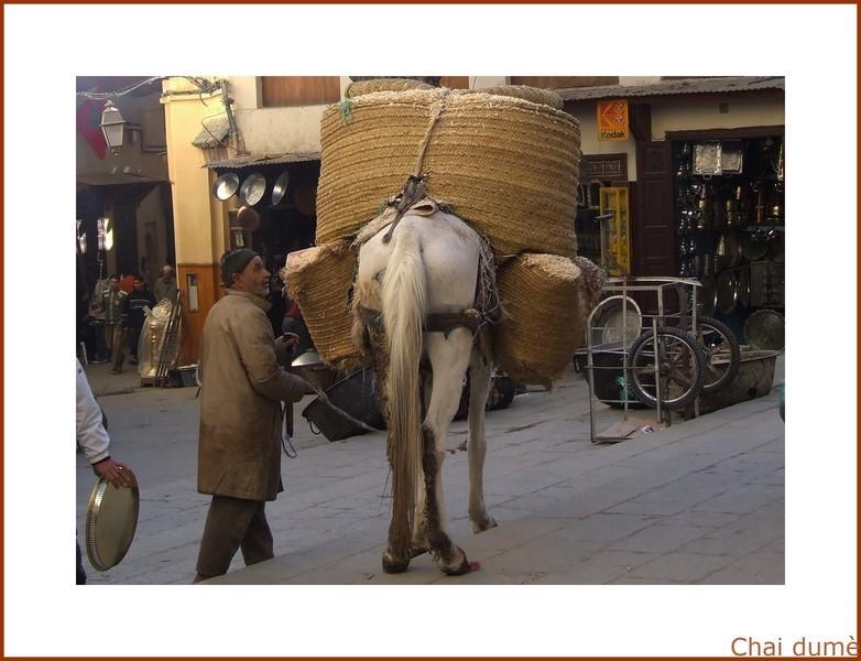 transport de sciure pour chauffer l'eau du hammam