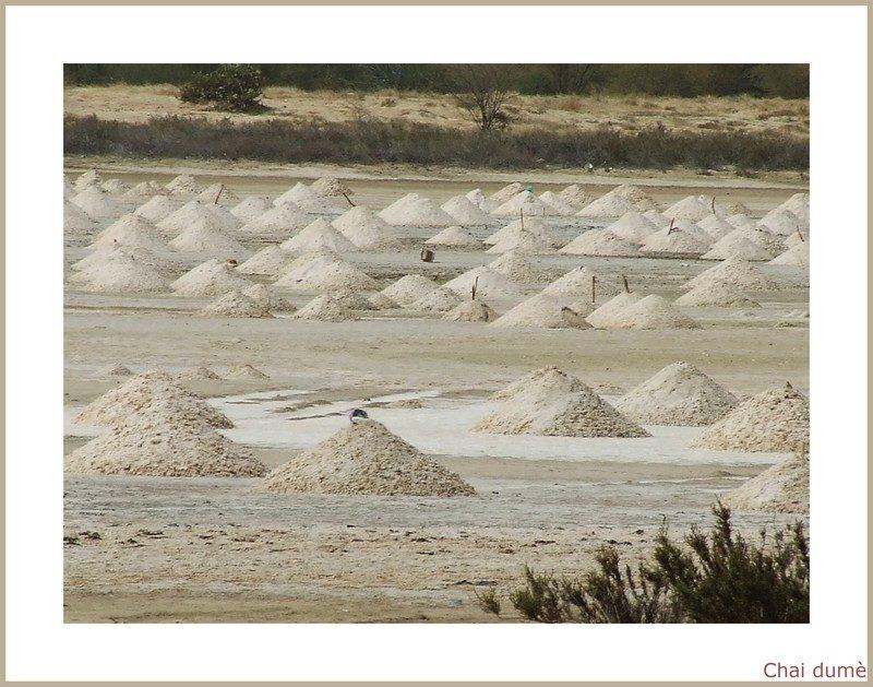 sel à st Louis du Sénégal