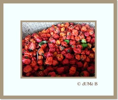 peppers-thumb.jpg