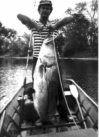 jm pêcheur