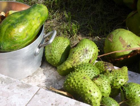 corossol-et-papayes