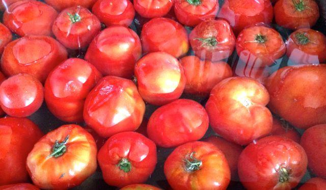 des tomates pour un coulis.. de tomates